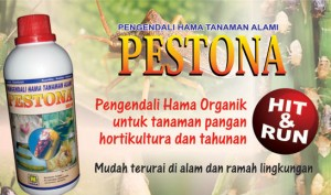 jual pupuk nasa pestona